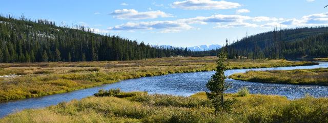 Yellowstone国立公園