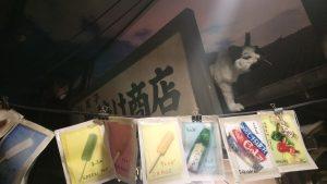 昭和のネコ